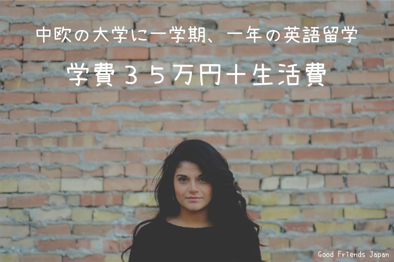 http://goodfriends.jp/western-northern-europe