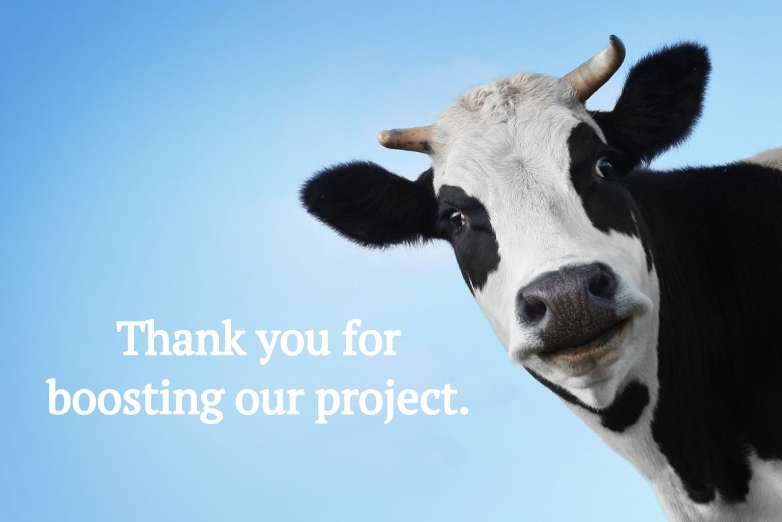Thank you for boosting our project